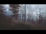 Richard Wagner - Siegfried Forest Murmurs