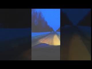 Лоси но дороге Нерехте-Кострома! Будьте осторожны!!!