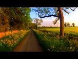 30 Minutes Workout - Virtual Scenery - Treadmill / Exercise Machine (Cotswolds UK) 1080/60fps