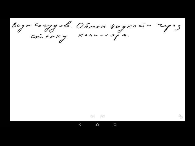 Гемодинамика часть 1. Транскапиллярный обмен