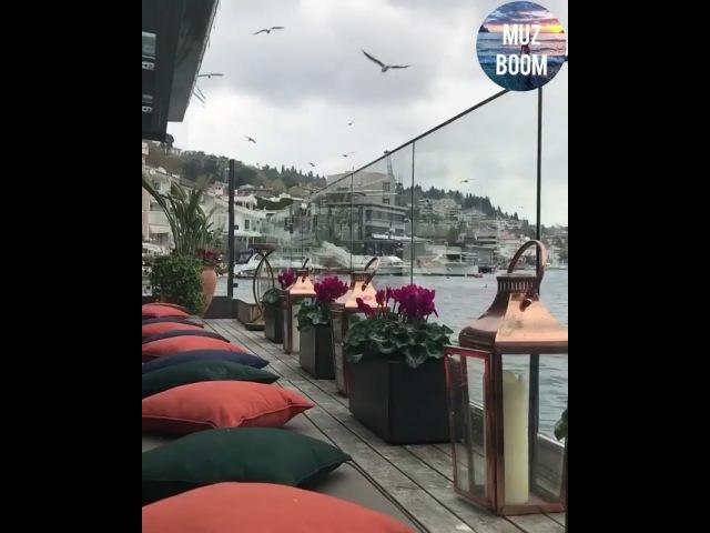 Lili__kazieva video