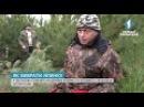 В державній агенції лісових ресурсів розробили спеціальний додаток для смартфо