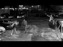 В Полтаве на Половках у девушки выхватили щенка лабрадора-ретривера (2017.01.07)