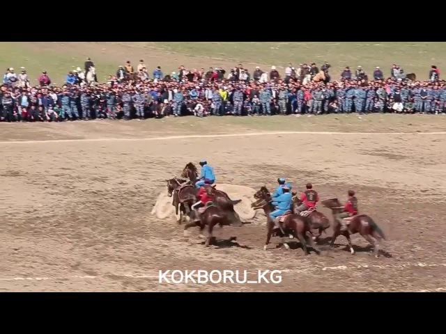 Жиган - один из лучших лошадей защитников в кок-бору