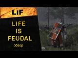 Life is Feudal MMO: краткий обзор ММОРПГ онлайн-игры, где поиграть