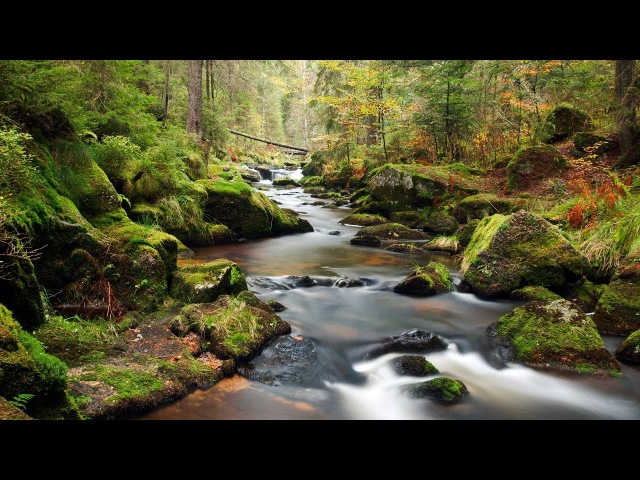 Флейта Звуки воды Музыка для медитации Relax Peaceful Music