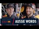 Sharks Lamingtons and Neighbours Daniel Ricciardo and Max Verstappen play Australian Word Games
