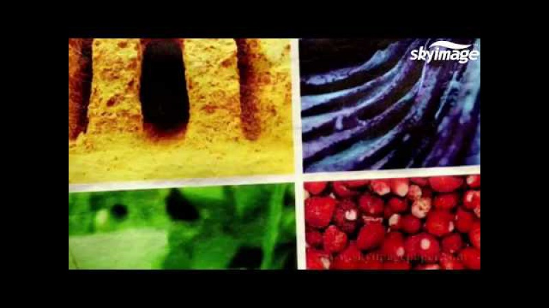 Steps for dye sublimation and DTG printing process