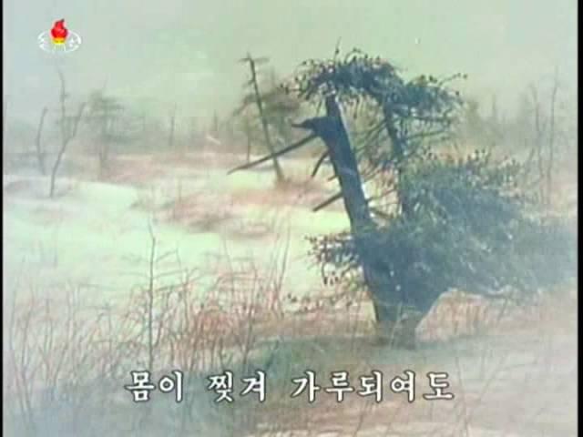 남산의 푸른 소나무