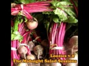 Dumhi Loosies v 2 The Midnight Salad Sessions 2014 Hip Hop Compilation