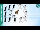 Охота на зайца КОТЛОМ ! Истребление или способ охоты? Охотник Любитель