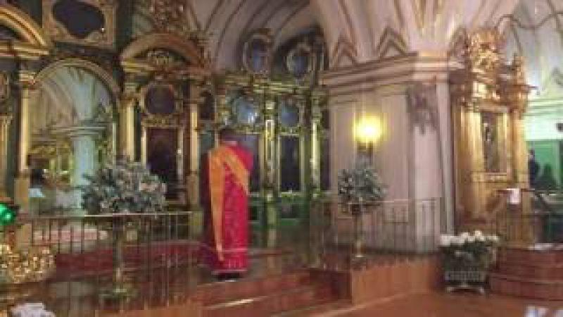Николо-Богоявленский собор - Честнейшую (СДС в Санкт-Петербурге)