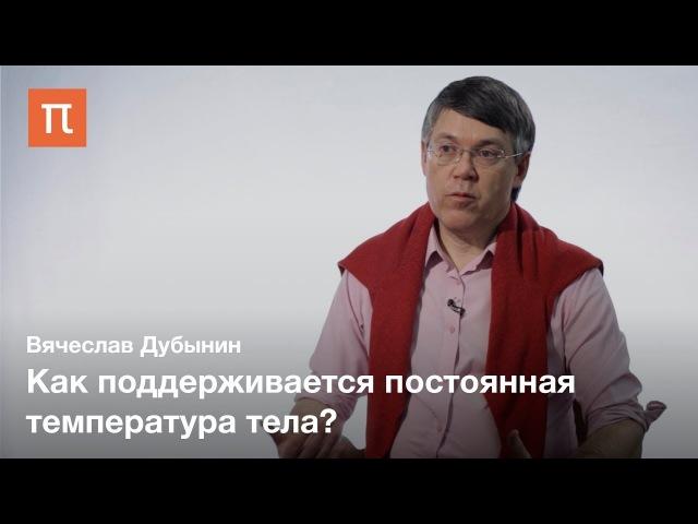 Внутренняя чувствительность Вячеслав Дубынин