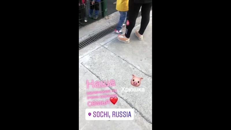 Сашенька Задойнова/ гнездо пересмешника