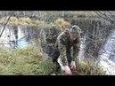Охота на бобра капканами 2017г