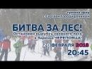 Остановим вырубку хвойного леса в Заречье Прямой эфир с Сергеем Городишениным