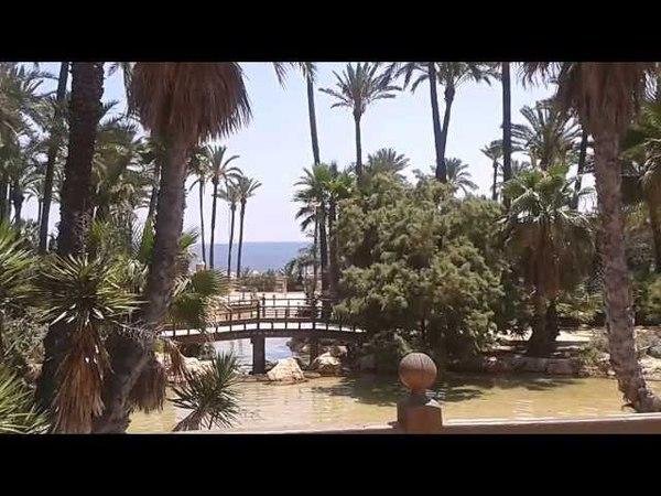 Пальмераль Пальмовый лес Эльче Испания. Рай земной
