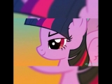 My Little Pony | Мой маленький пони | Twilight Sparkle | Сумеречная Искорка | Rainbow Dash | Радуга Дэш | VINE | Вайн