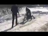 Избиение семиклассников в Бердске (Новосибирская область)