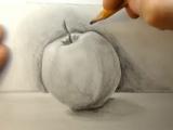 Основные принципы рисования. Светотень и градация тона