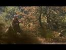 Охота на уток и капканы на зайцев