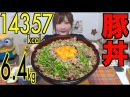 【MUKBANG】 That's A Lot!! Pork Bowl Rice [Egg Yolk Garlic POWER] Soup!! 6,4Kg 14357kcal [Use CC]