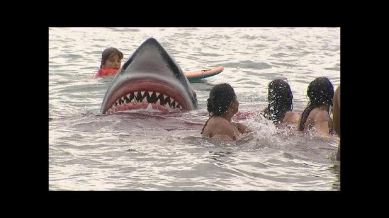 Câmera Escondida - Ataque Tubarão Pum Elevador 20 07 2014 - Sílvio Santos