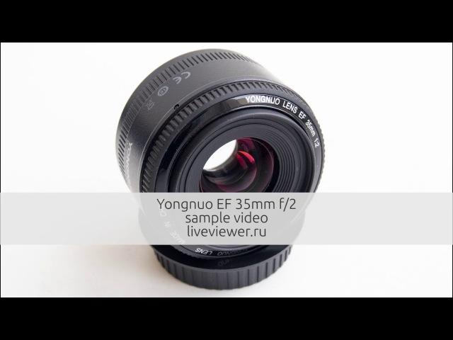 Yongnuo 35mm f 2 тестовое видео Фотолюбитель