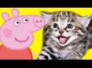 Мультфильмы для детей Свинка Пеппа Котята и Истории игрушек Новые мультики 2016 на русском