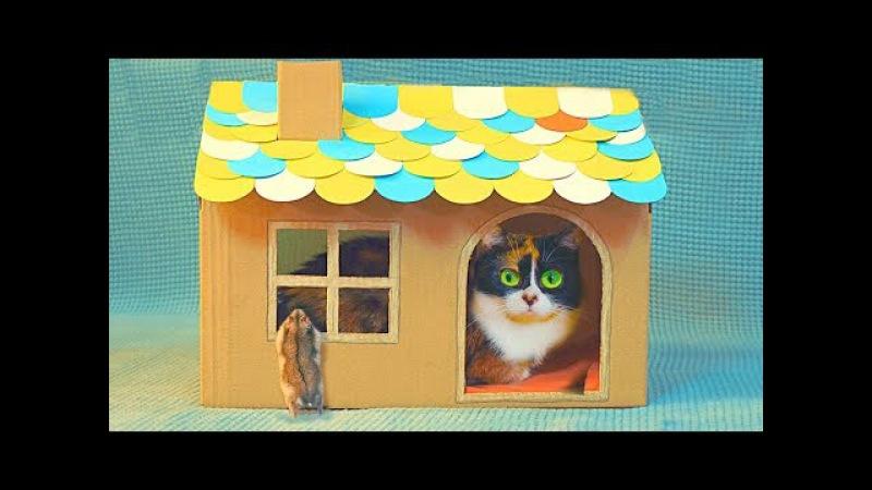 Ein Kartonhaus für Katze selbst gemacht