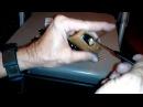 (174) Master Lock Pro Series 6850 SPP'd Open