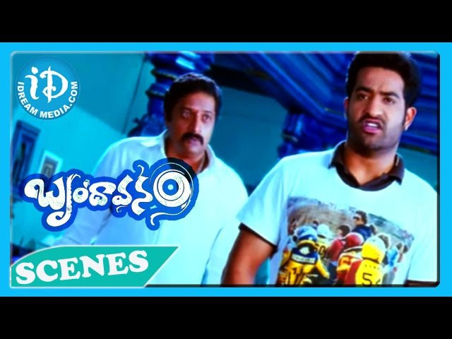 Brindavanam Movie - Prakash Raj, Ajay, Jr N T R Action Scene