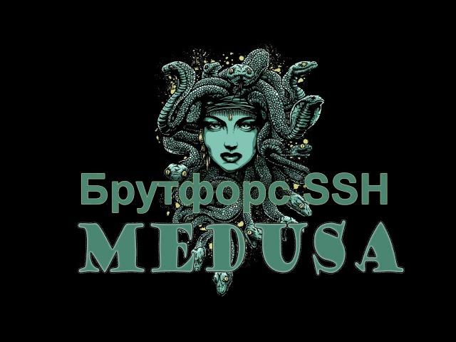 Брутфорс SSH | Medusa в CentOs 7 | Программа Medusa