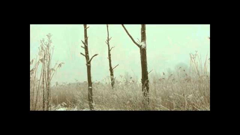 Brenner Moor - Winter - Lumix GH2