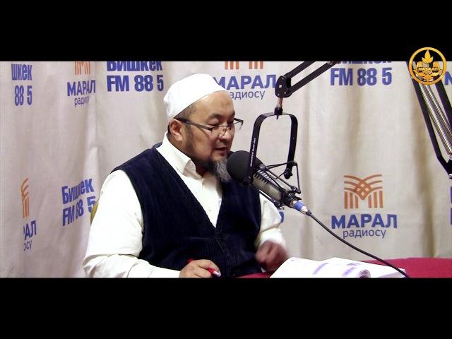 Аалымдан асыл жооп 1-бөлүм. Шейх Чубак ажы. Марал радиосу. 19 11 2016.