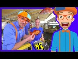 Learn About Fish for Children with Blippi Educational Videos for Kids
