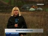 Тернопольский художник создал дом-НЛО