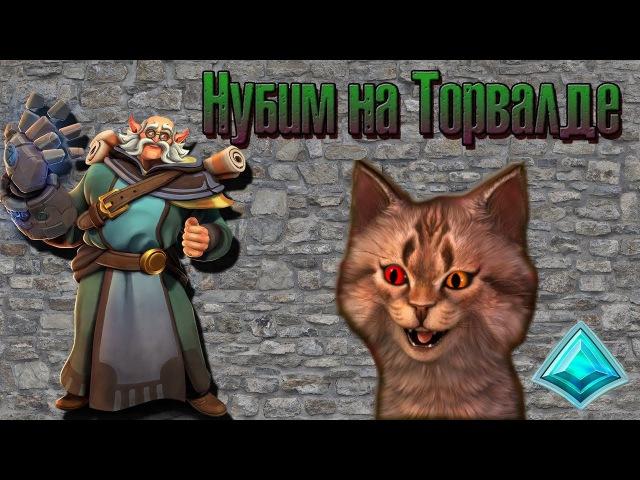Нубим на Торвальде в паладинс с Котей