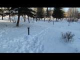 Вандалы оставили парк «Черное озеро» без ночной подсветки