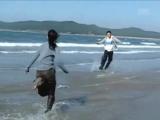 Море (Punch)