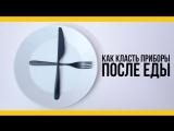 Как класть приборы после еды [Якорь _ Мужской канал]