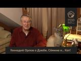 Геннадий Орлов и его кот о Дзюбе и Сёмине