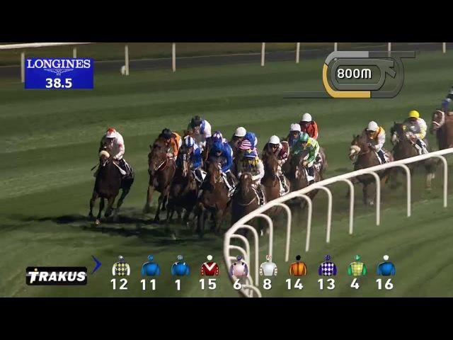 Race 6 Meydan Classic Trial Race Recap