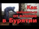 Как избавится от клопов и тараканов в Улан Удэ Дезинфекция домов квартир госуч