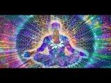 Системы здоровья. Гармонизация энергий. Часть 1. Марина Бутынская