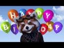 Смешные открытки с днем рождения. Открытки с днем рождения.