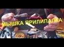 Рыбалка Изготовление приманки на щуку сома таймень мышь прилипалка с кисточки для покраски