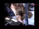 「X JAPAN」 紅 1994 Tokyo LIVE WeAreX Edit