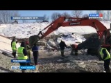 Реконструкция канала шлюза привела к массовой гибели рыбы в Новосибирске