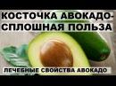КОСТОЧКА АВОКАДО СПЛОШНАЯ ПОЛЬЗА Лечебные свойства авокадо